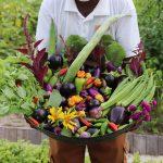 Frutas y verduras en Maldivas